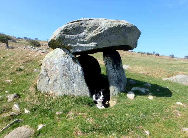 …. or perhaps a Bronze Age dog kennel