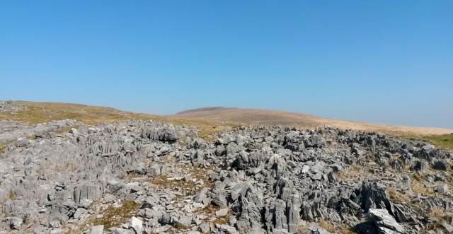 The west side of Fan Hir - a long whaleback ridge above limestone outcrops