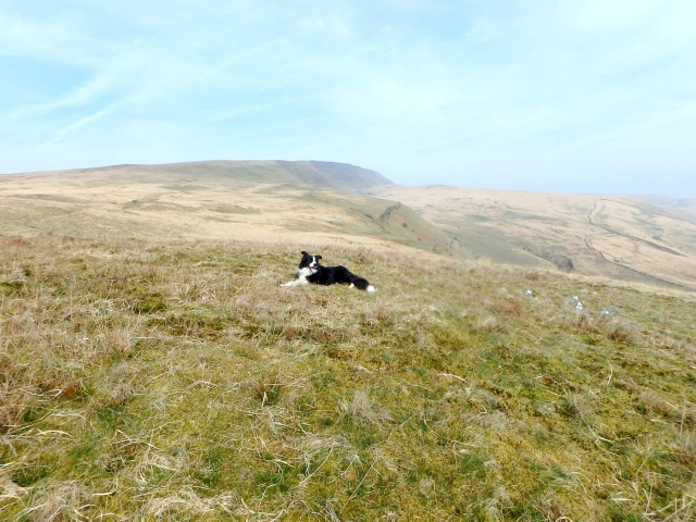'Mist' taking a break with Fan Hir behind in the distance