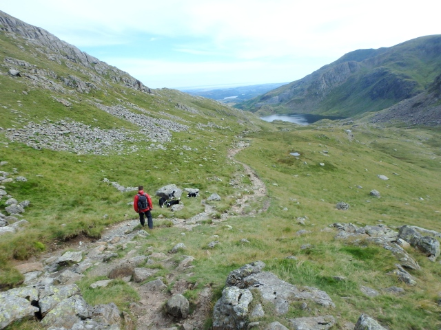 Heading down to Levers Water from Swirl Hawse