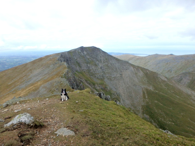 …. and looking back to Yr Elen on the way up Carnedd Llewelyn