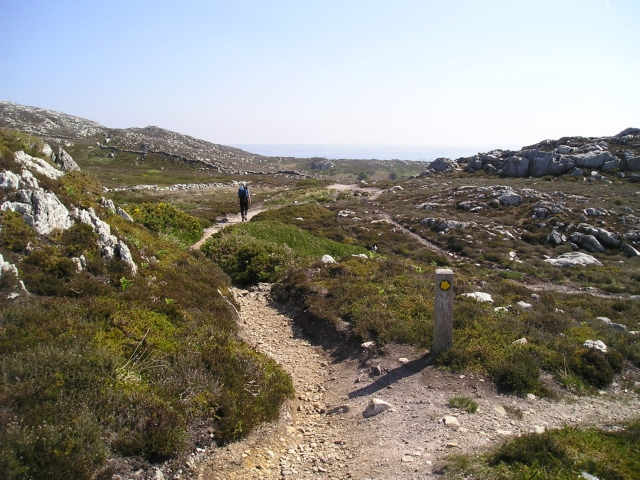 Typical view of the ground and paths around Holyhead Mountain