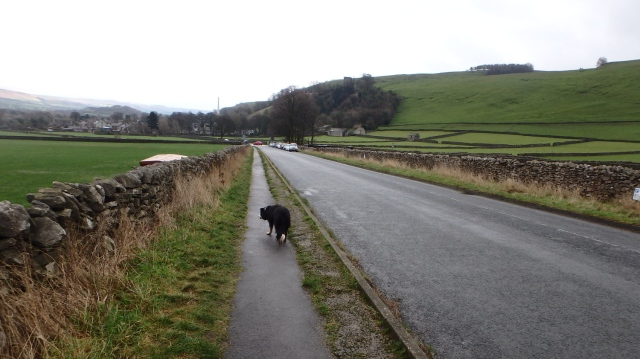 Heading for home - at the end of a soggy doggy walk