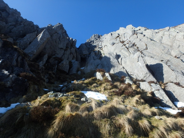 Looking up towards the summit