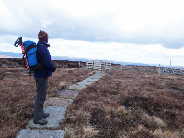 Chris at the walk high point – a mere 520 metres!
