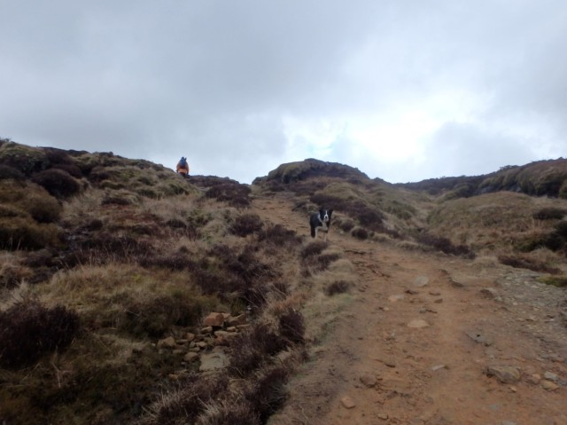Leaving Ogden Clough to head over Barley Moor