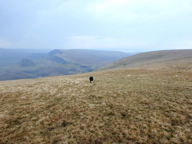 Back across the moor ….