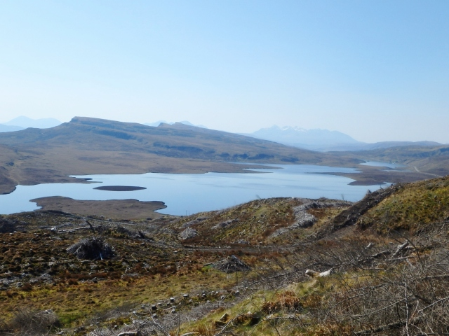 The view south towards Loch Leathan, now minus trees!