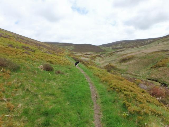 …. and looking forwards towards the Berwyn Ridge