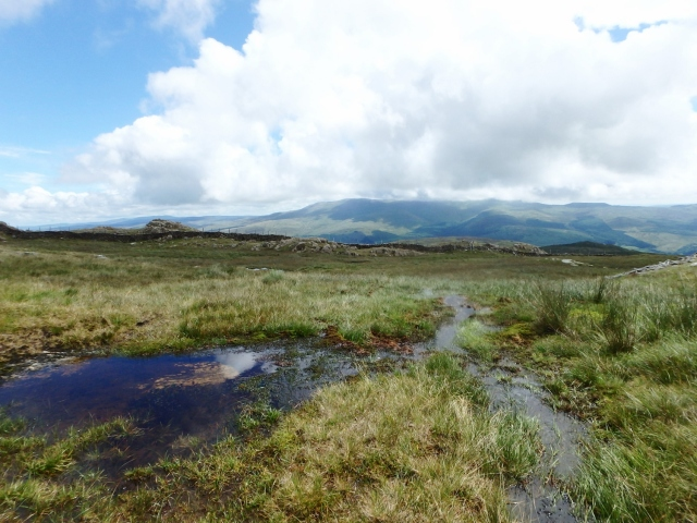 The soggy plateau below the summit ….