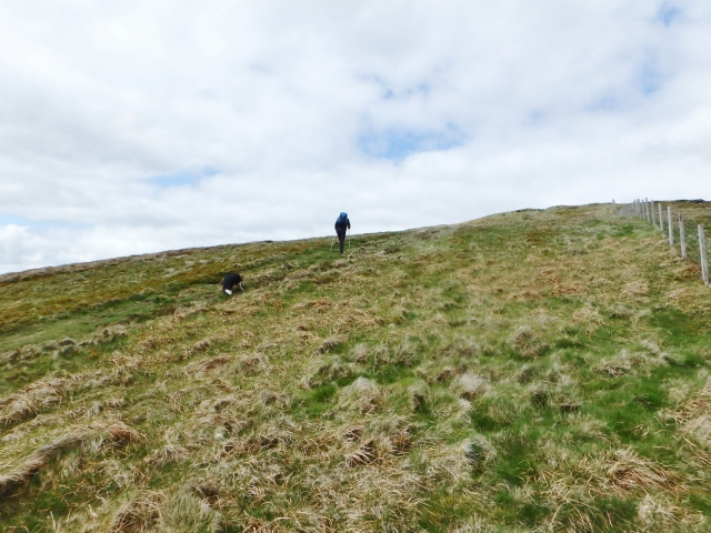In fact, there's quite a bit of uphill ….