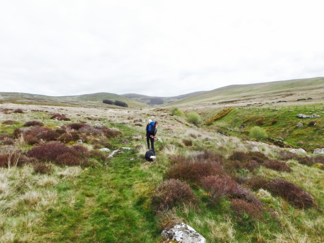 …. then on to open moorland