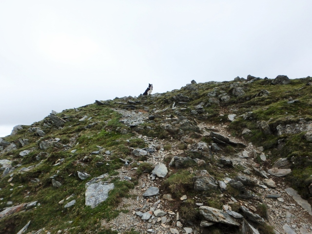 Getting near to the summit