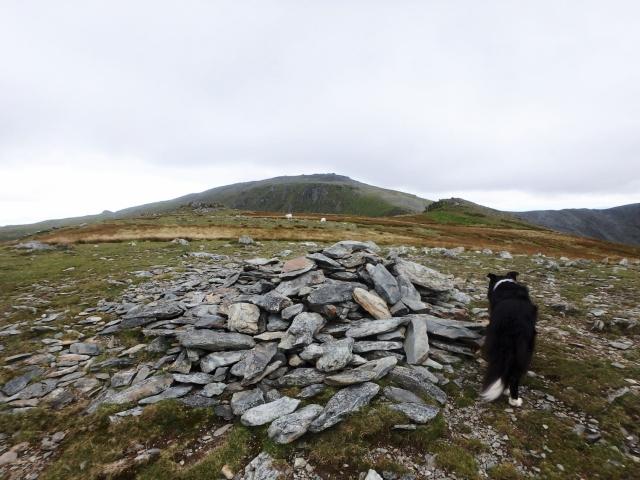 On Yr Elen with Carnedd Llewelyn ahead