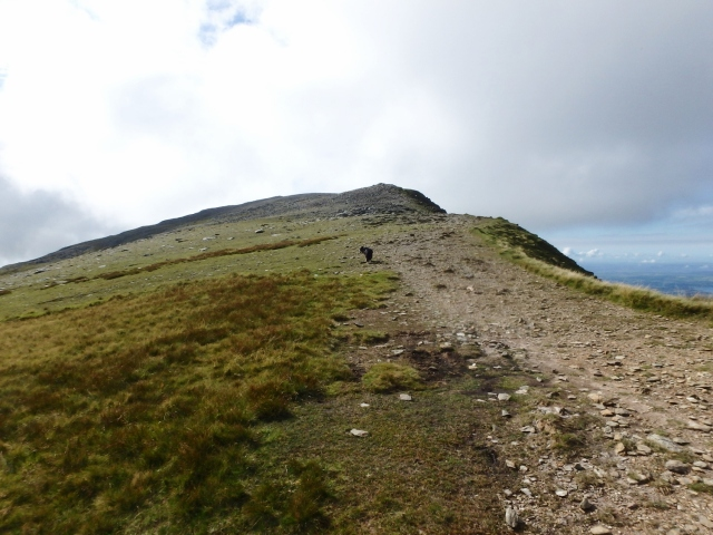 Final slopes leading to the summit of Carnedd Dafydd ….