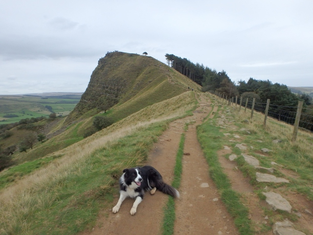 Border Collie 'Mist' chilling out just before Back Tor