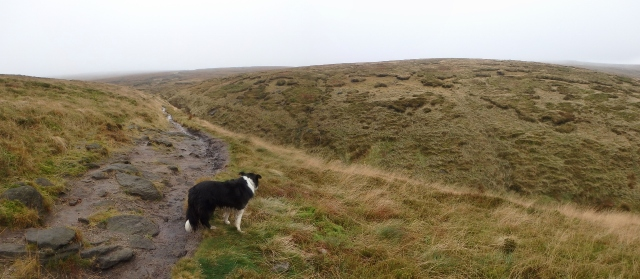 The Pennine Way near Bleaklow