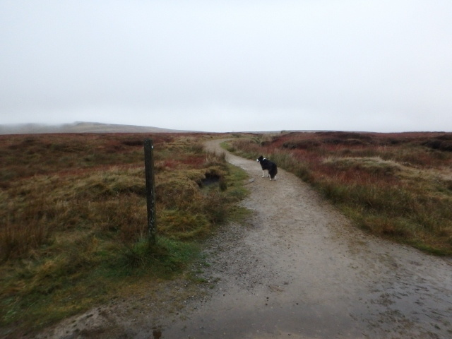 The Pennine Way starts off as a well-made path ….