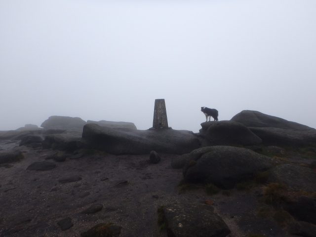 The Trig Point at Higher Shelf Stones (621 metres)