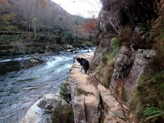 The rocky bit of the path, directly above the river ….