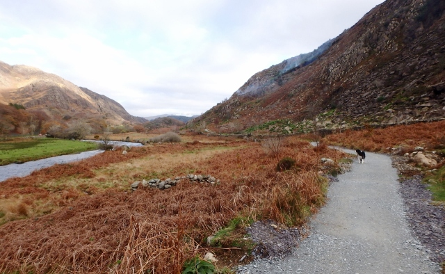 The path from Beddgelert to Llyn Dinas