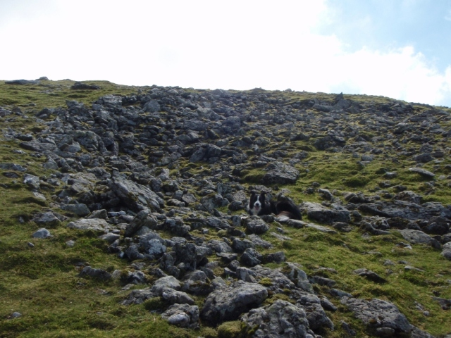 The initial impact point of the Canberra on Carnedd Llewelyn (Photo Sept 2014)