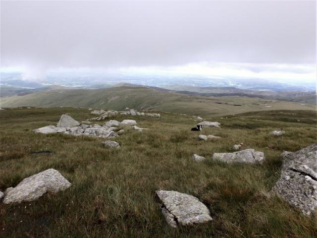 The crash site of Avro Anson EG110