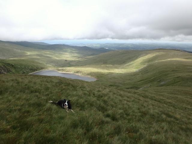 'Mist' with Melynllyn (reservoir) below