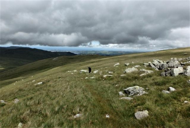 Heading back along the ridge of Cefn Tal Llyn Eigiau