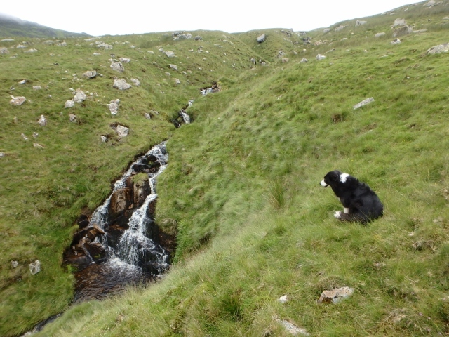 Small waterfall on the Afon Eigiau