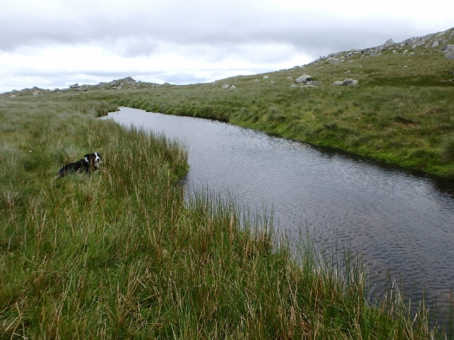 The upper reaches of the Afon Eigiau, not far from its source